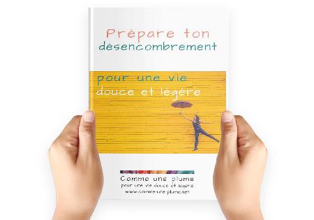 Guide Prépare ton désencombrement - Visuel - Comme une plume, accompagnement au désencombrement pour une vie douce et légère
