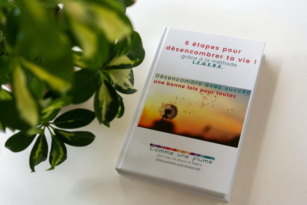 6 étapes pour désencombrer ta vie - guide - méthode LEGERE